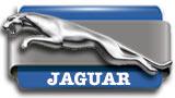 boton_jaguar