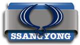 boton_ssangyong
